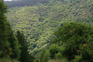 Casona labrada valle